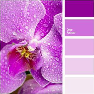 color del año